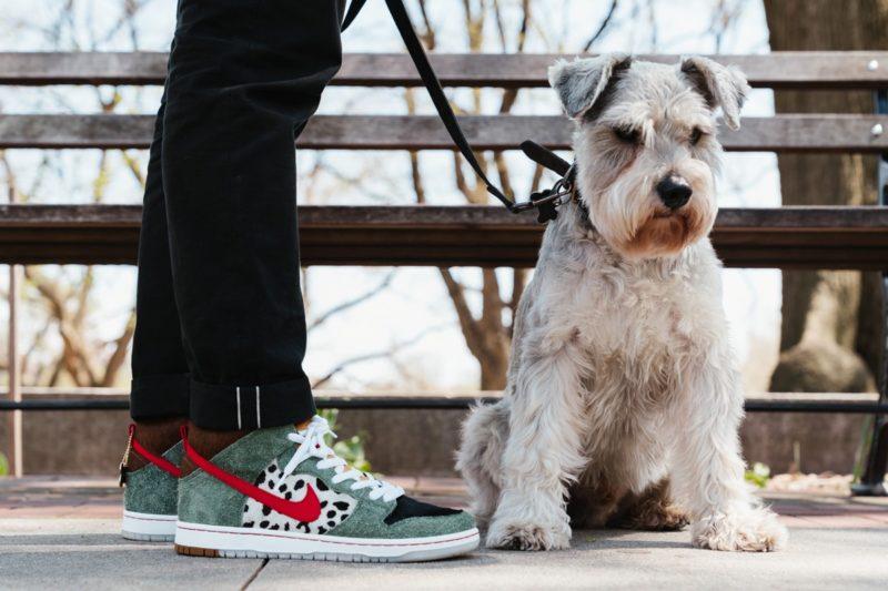 https hypebeast.com image 2019 04 nike sb dunk high walk the dog closer look 3
